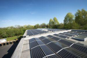 Mon installateur photovoltaïque n'existe plus / a fait faillite: que faire?